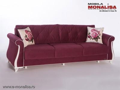 Canapea extensibila confortabila cu lada Mabel visiniu