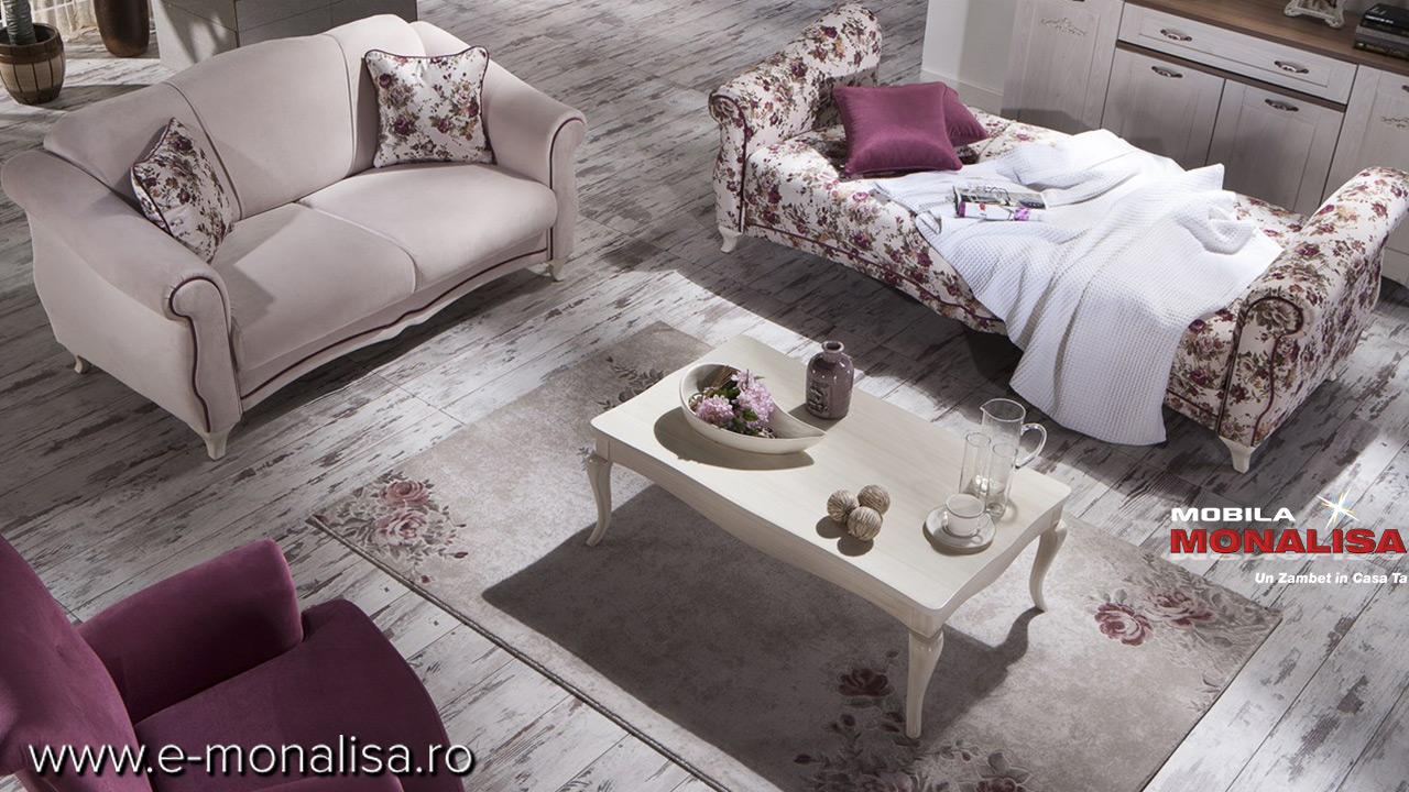 Set canapele Clasice de Lux
