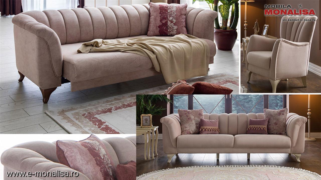 Canapele moderne elegante living clasic